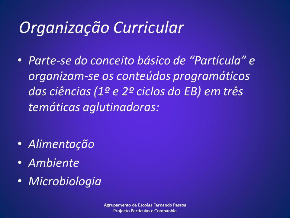 Organização Curricular Parte-se do conceito básico de Partícula e organizam-se os conteúdos programáticos das ciências (1º e 2º ciclos do EB) em três