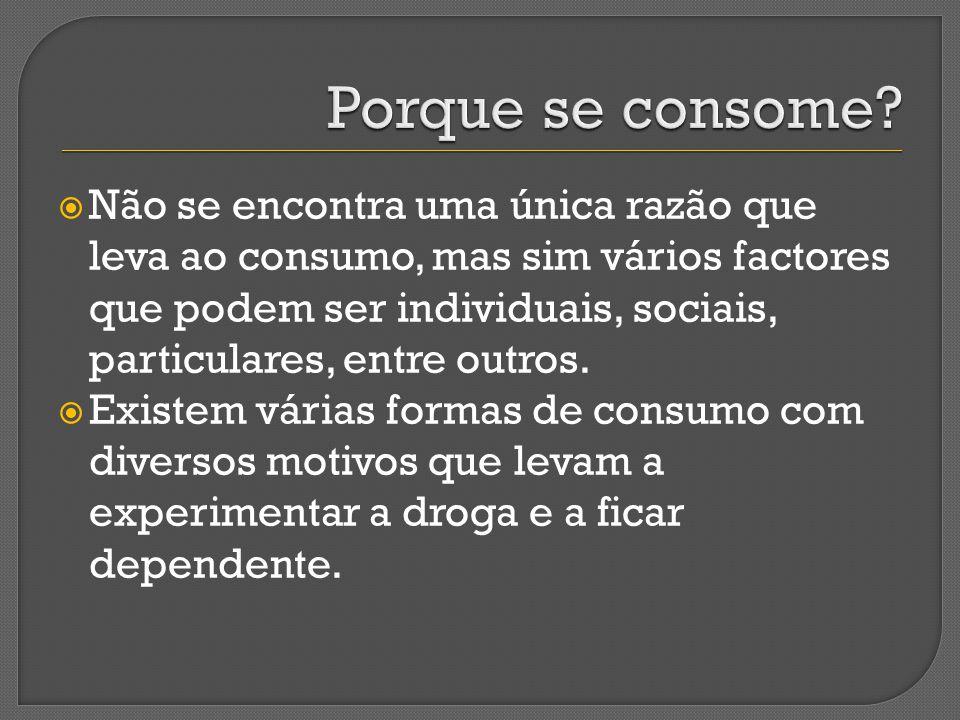 Não se encontra uma única razão que leva ao consumo, mas sim vários factores que podem ser individuais, sociais, particulares, entre outros. Existem v