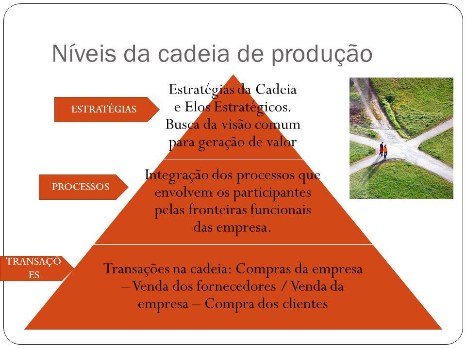 Níveis da cadeia de produção Estratégias da Cadeia e Elos Estratégicos. Busca da visão comum para geração de valor Integração dos processos que envolv