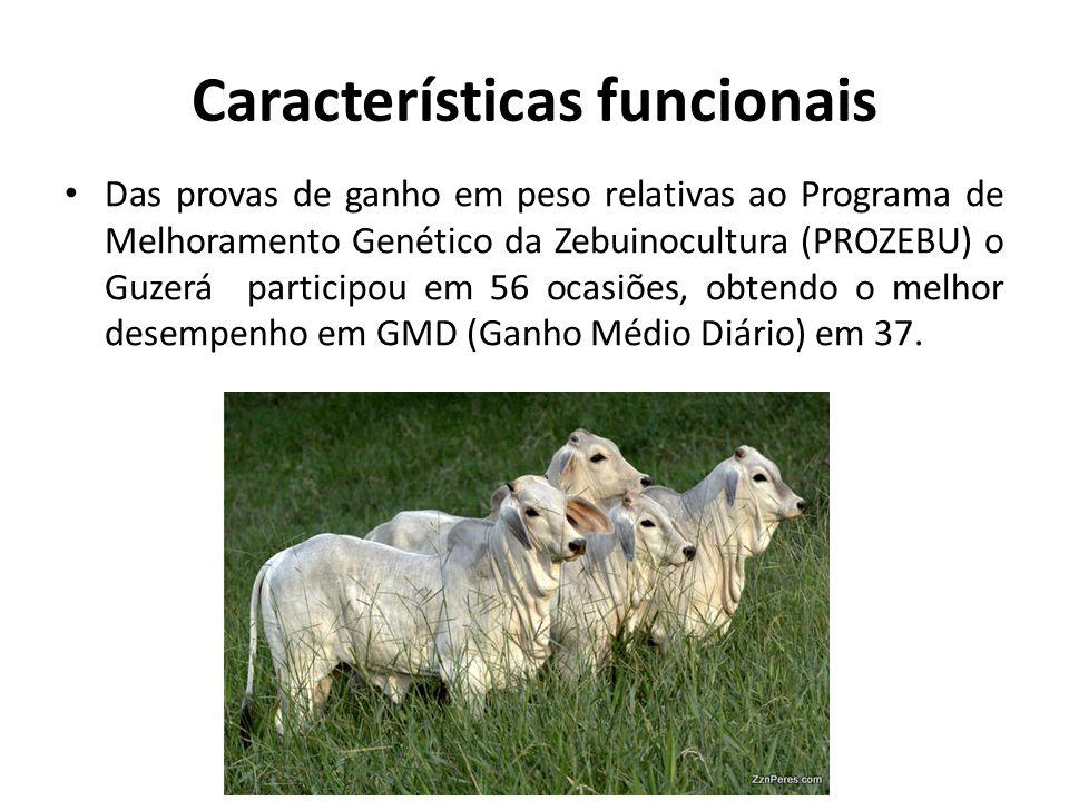 Características funcionais Das provas de ganho em peso relativas ao Programa de Melhoramento Genético da Zebuinocultura (PROZEBU) o Guzerá participou