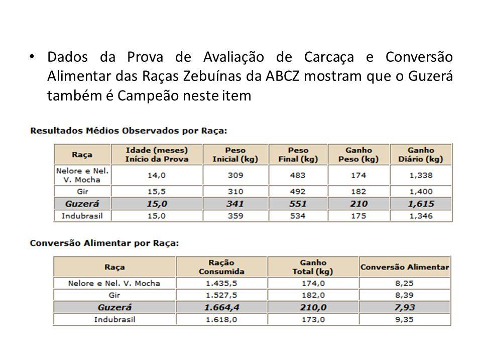 Dados da Prova de Avaliação de Carcaça e Conversão Alimentar das Raças Zebuínas da ABCZ mostram que o Guzerá também é Campeão neste item