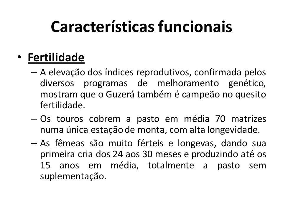 Características funcionais Fertilidade – A elevação dos índices reprodutivos, confirmada pelos diversos programas de melhoramento genético, mostram qu