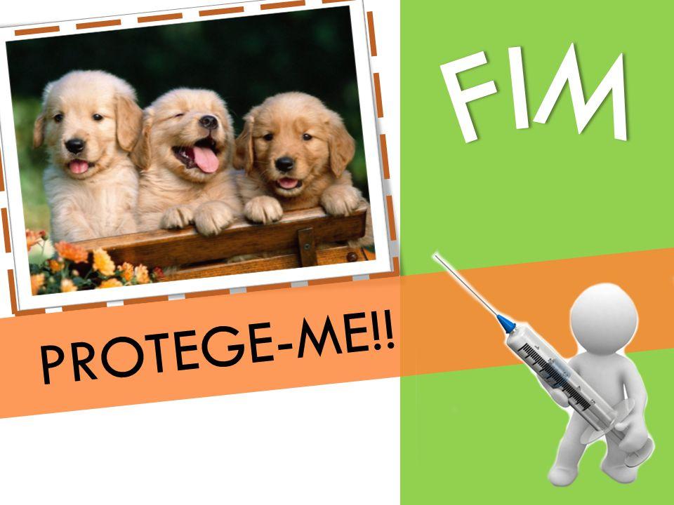 PROTEGE-ME!!