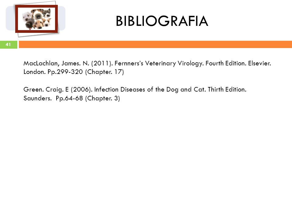 41 BIBLIOGRAFIA MacLachlan, James. N. (2011). Fernnerss Veterinary Virology. Fourth Edition. Elsevier. London. Pp.299-320 (Chapter. 17) Green. Craig.