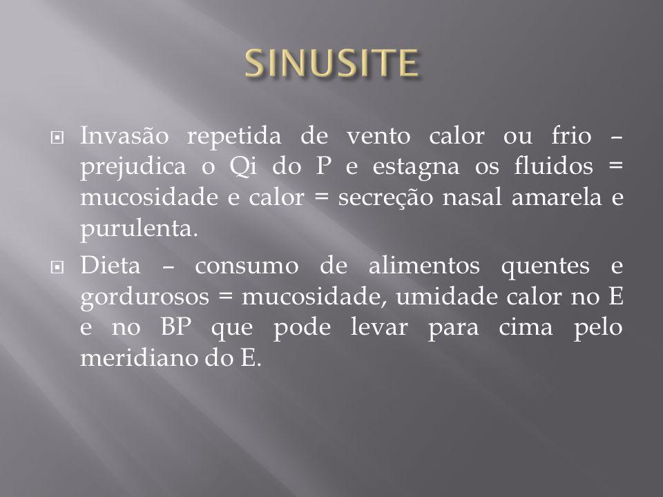 Invasão repetida de vento calor ou frio – prejudica o Qi do P e estagna os fluidos = mucosidade e calor = secreção nasal amarela e purulenta. Dieta –