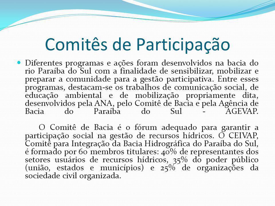 Comitês de Participação Diferentes programas e ações foram desenvolvidos na bacia do rio Paraíba do Sul com a finalidade de sensibilizar, mobilizar e preparar a comunidade para a gestão participativa.