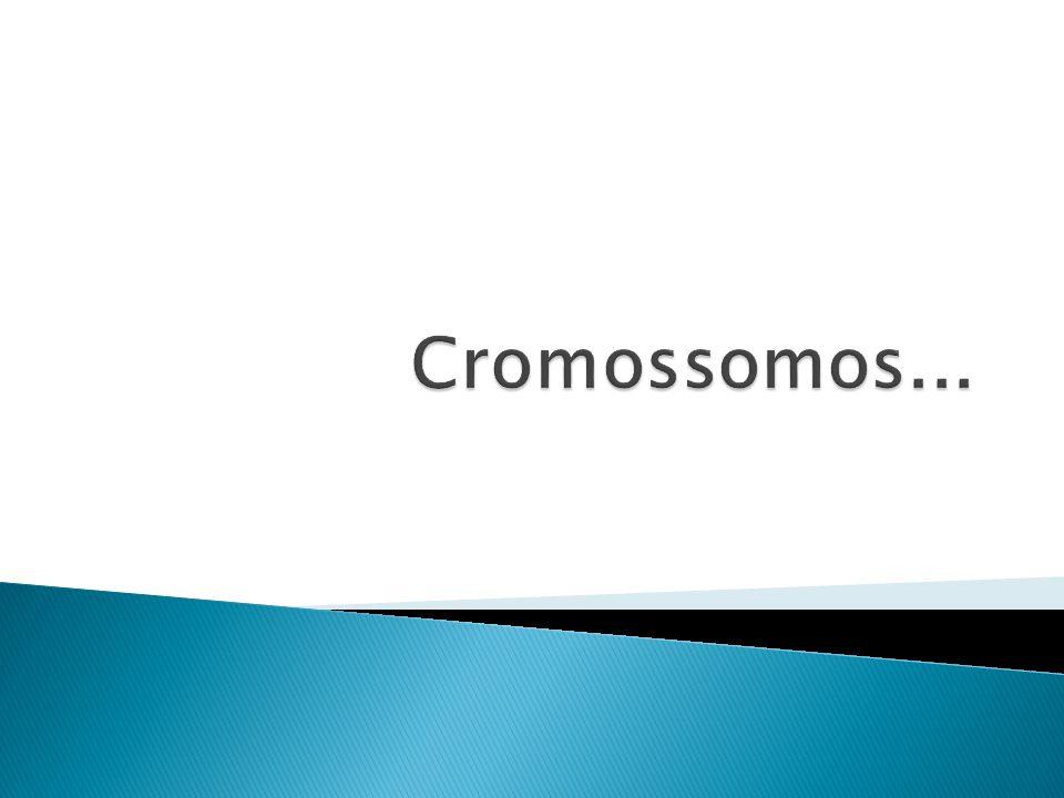 Alelos que não se expressam na condição heterozigótica são denominados recessivos.