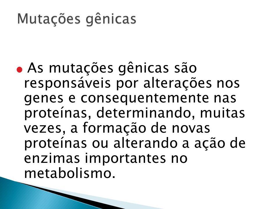 As mutações gênicas são responsáveis por alterações nos genes e consequentemente nas proteínas, determinando, muitas vezes, a formação de novas proteínas ou alterando a ação de enzimas importantes no metabolismo.