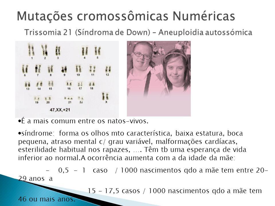 37 Mutações cromossômicas Numéricas Trissomia 21 (Síndroma de Down) – Aneuploidia autossómica É a mais comum entre os natos-vivos.