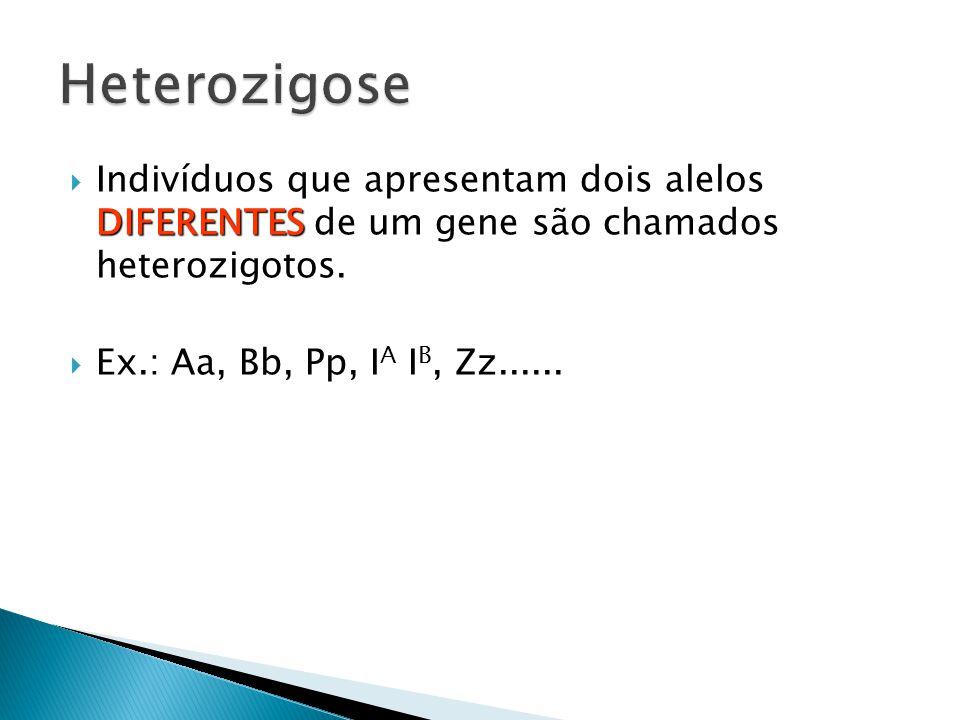 DIFERENTES Indivíduos que apresentam dois alelos DIFERENTES de um gene são chamados heterozigotos.