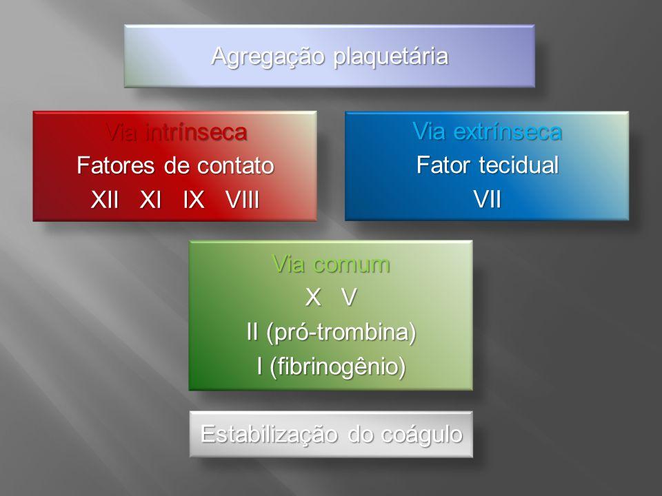 Via intrínseca Fatores de contato XII XI IX VIII Via extrínseca Fator tecidual VII Via comum X V II (pró-trombina) I (fibrinogênio) Estabilização do c