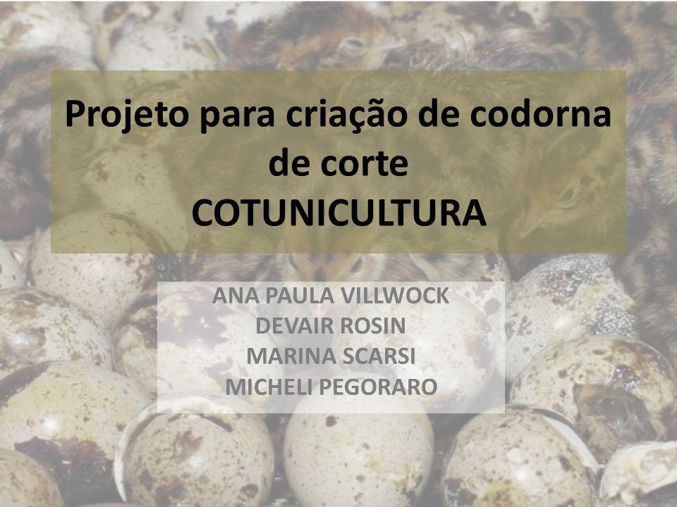 Projeto para criação de codorna de corte COTUNICULTURA ANA PAULA VILLWOCK DEVAIR ROSIN MARINA SCARSI MICHELI PEGORARO