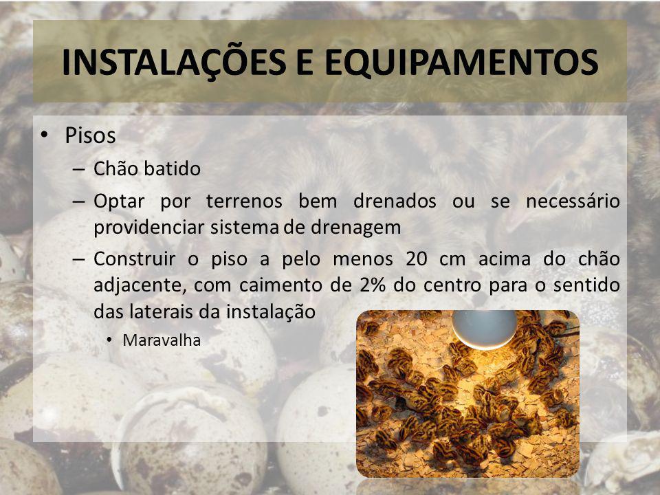 INSTALAÇÕES E EQUIPAMENTOS Pisos – Chão batido – Optar por terrenos bem drenados ou se necessário providenciar sistema de drenagem – Construir o piso