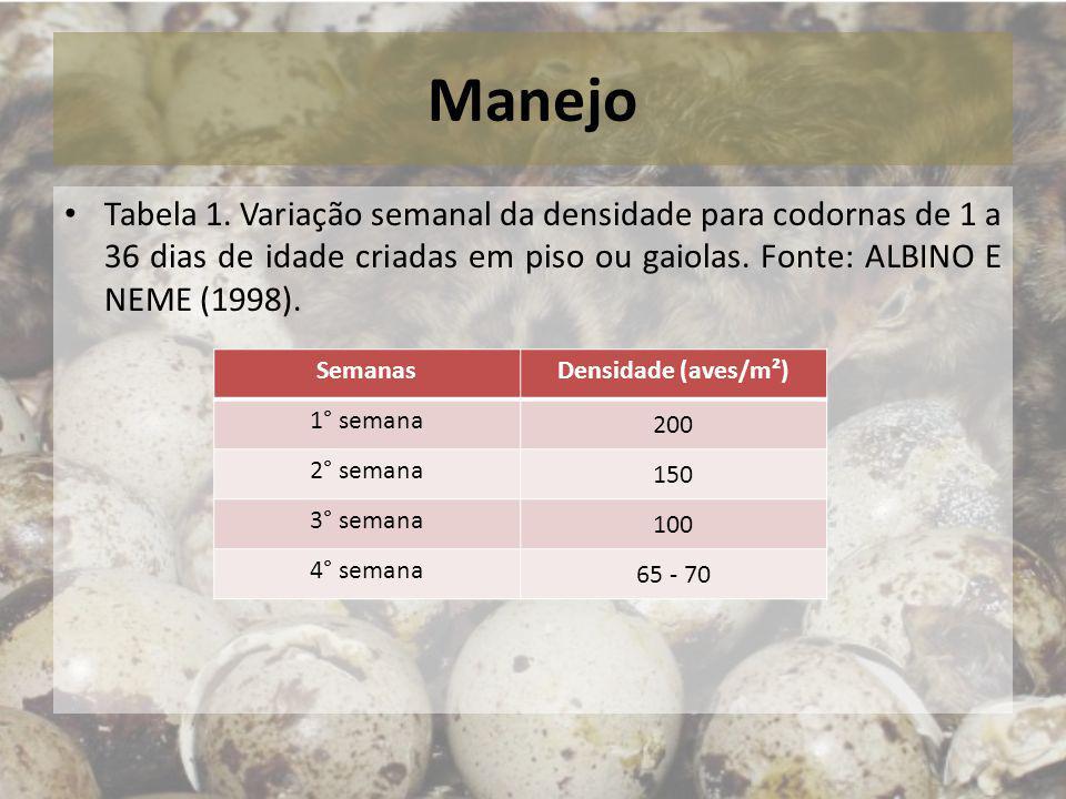 Manejo Tabela 1. Variação semanal da densidade para codornas de 1 a 36 dias de idade criadas em piso ou gaiolas. Fonte: ALBINO E NEME (1998). SemanasD