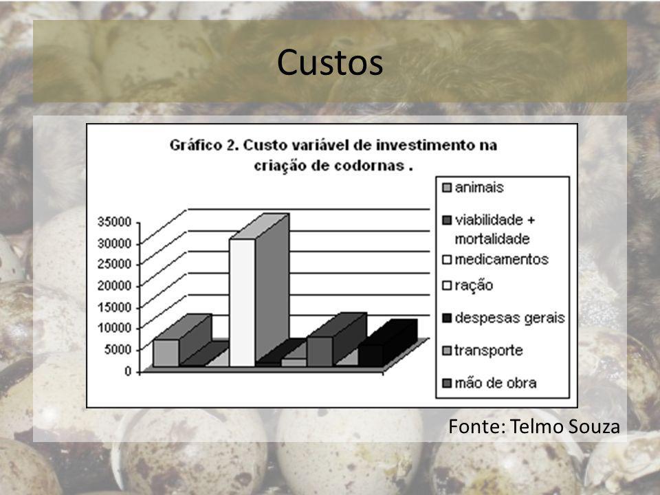 Custos Fonte: Telmo Souza