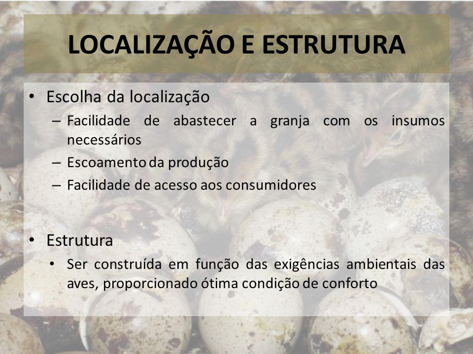 LOCALIZAÇÃO E ESTRUTURA Escolha da localização – Facilidade de abastecer a granja com os insumos necessários – Escoamento da produção – Facilidade de