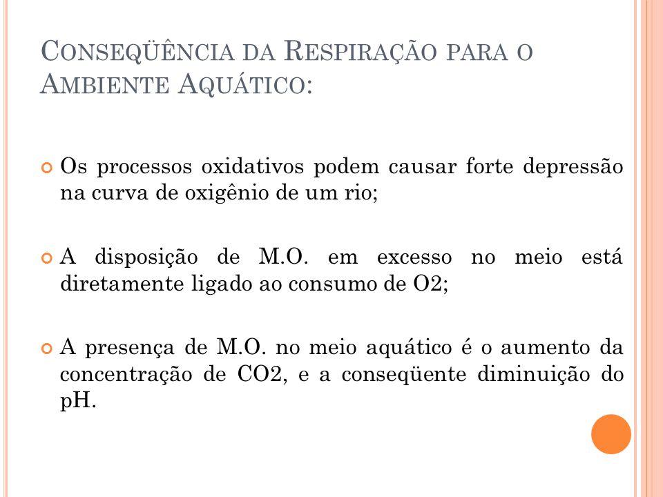 C ONSEQÜÊNCIA DA R ESPIRAÇÃO PARA O A MBIENTE A QUÁTICO : Os processos oxidativos podem causar forte depressão na curva de oxigênio de um rio; A dispo