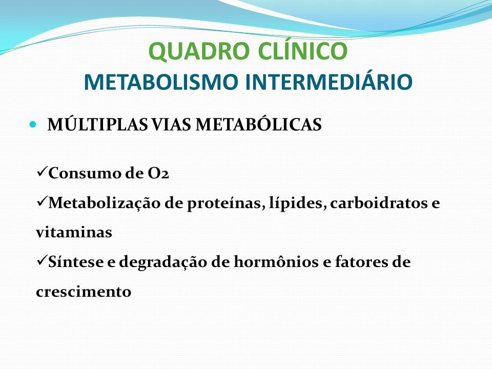 QUADRO CLÍNICO METABOLISMO INTERMEDIÁRIO MÚLTIPLAS VIAS METABÓLICAS Consumo de O2 Metabolização de proteínas, lípides, carboidratos e vitaminas Síntes