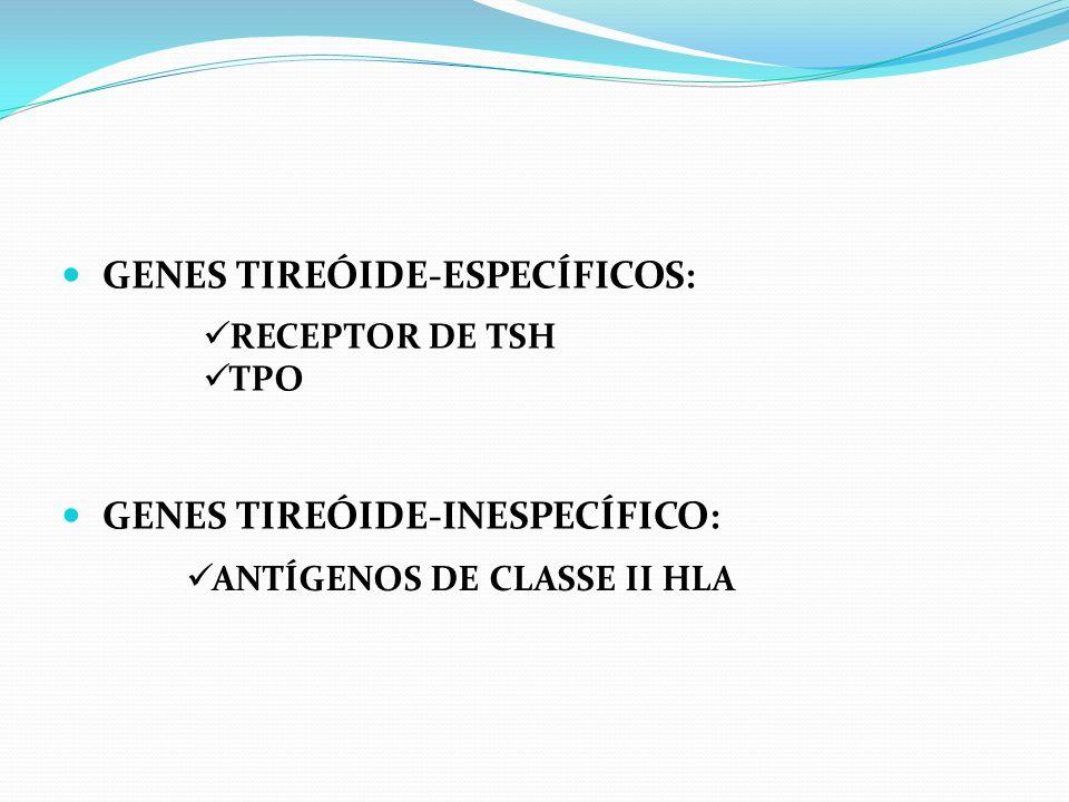 GENES TIREÓIDE-ESPECÍFICOS: GENES TIREÓIDE-INESPECÍFICO: RECEPTOR DE TSH TPO ANTÍGENOS DE CLASSE II HLA