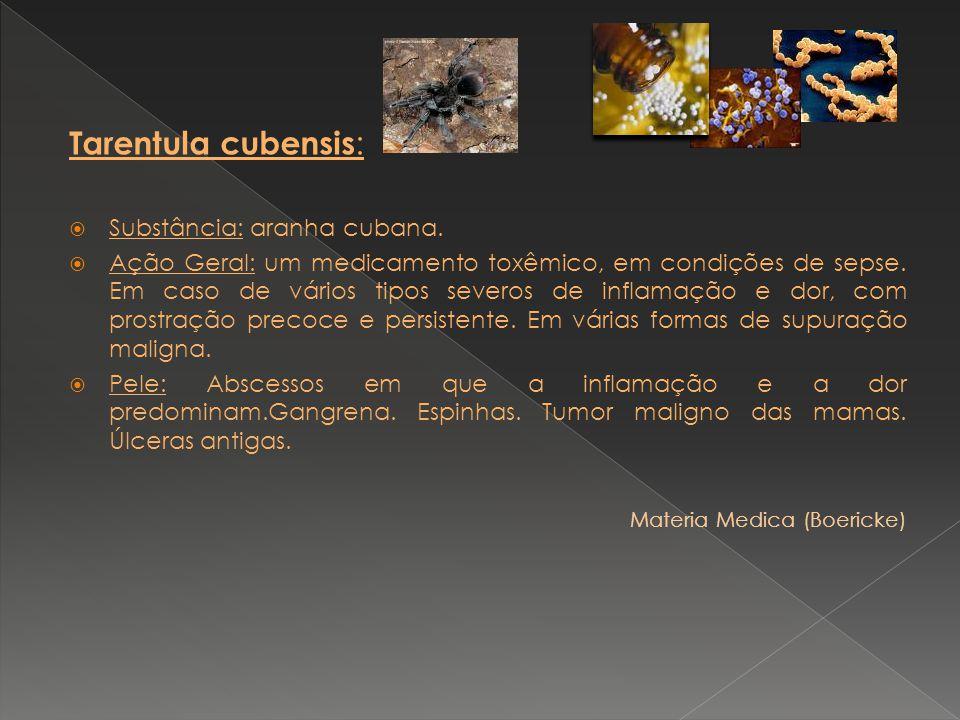 Tarentula cubensis : Substância: aranha cubana. Ação Geral: um medicamento toxêmico, em condições de sepse. Em caso de vários tipos severos de inflama