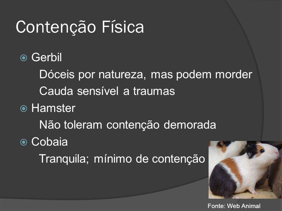 Contenção Física Gerbil Dóceis por natureza, mas podem morder Cauda sensível a traumas Hamster Não toleram contenção demorada Cobaia Tranquila; mínimo