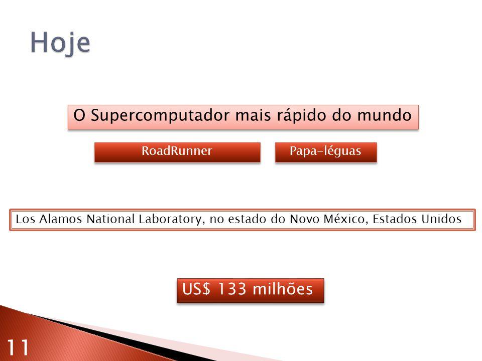 O Supercomputador mais rápido do mundo RoadRunner Los Alamos National Laboratory, no estado do Novo México, Estados Unidos US$ 133 milhões Papa-léguas 11