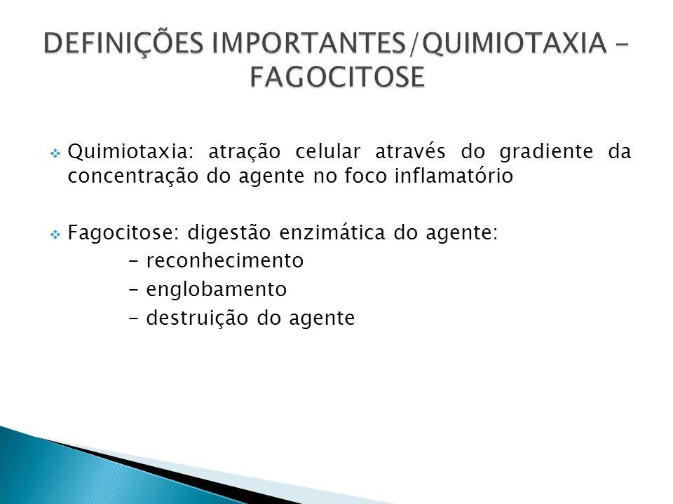 Quimiotaxia: atração celular através do gradiente da concentração do agente no foco inflamatório Fagocitose: digestão enzimática do agente: - reconhec