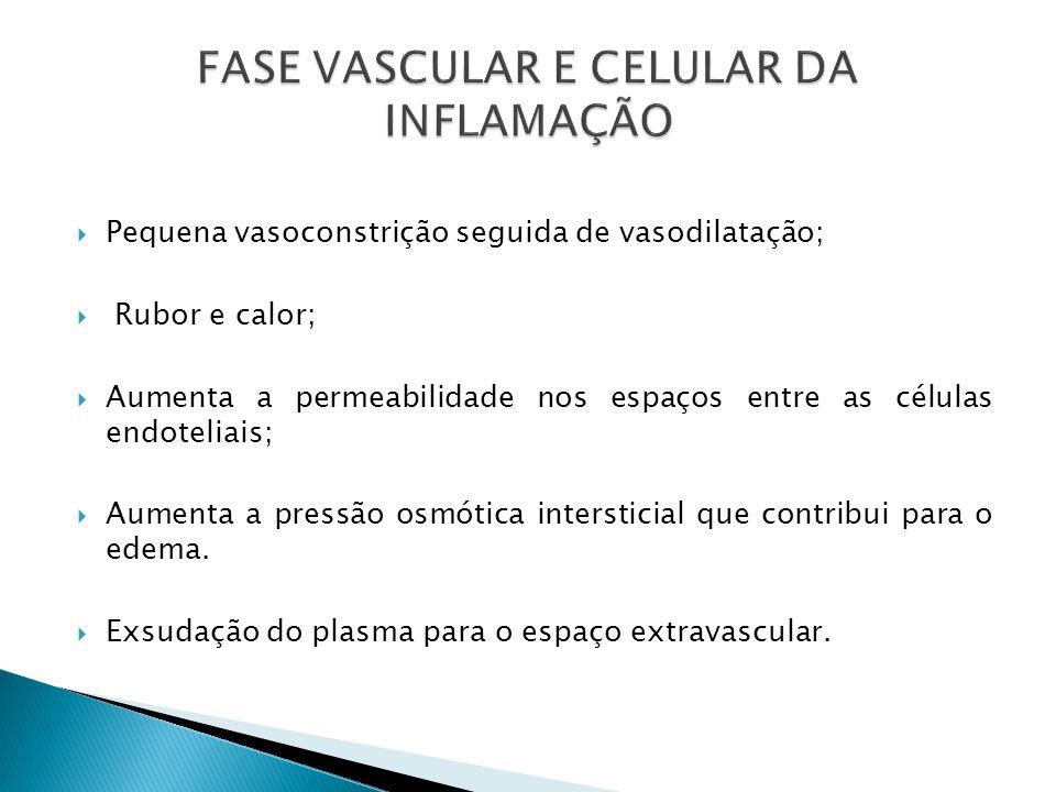 Pequena vasoconstrição seguida de vasodilatação; Rubor e calor; Aumenta a permeabilidade nos espaços entre as células endoteliais; Aumenta a pressão o
