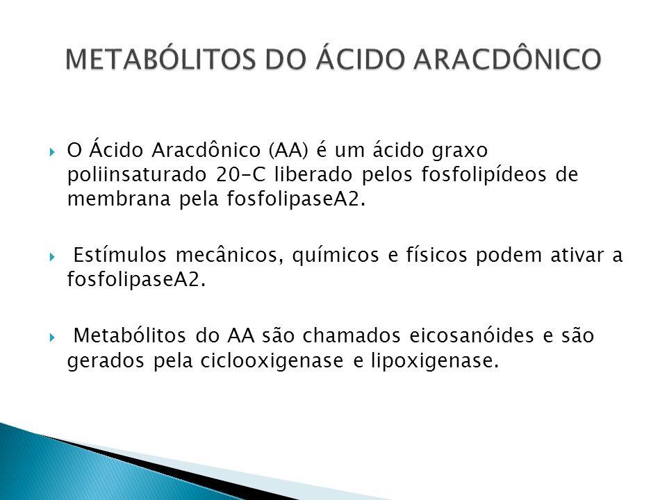 O Ácido Aracdônico (AA) é um ácido graxo poliinsaturado 20-C liberado pelos fosfolipídeos de membrana pela fosfolipaseA2. Estímulos mecânicos, químico