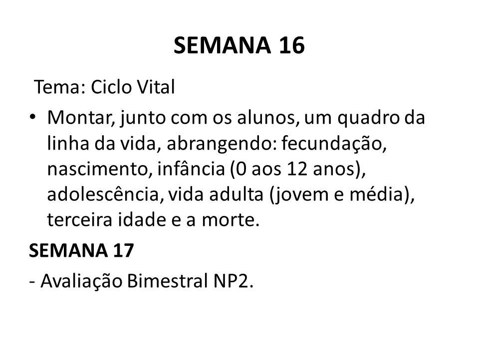 SEMANA 16 Tema: Ciclo Vital Montar, junto com os alunos, um quadro da linha da vida, abrangendo: fecundação, nascimento, infância (0 aos 12 anos), adolescência, vida adulta (jovem e média), terceira idade e a morte.