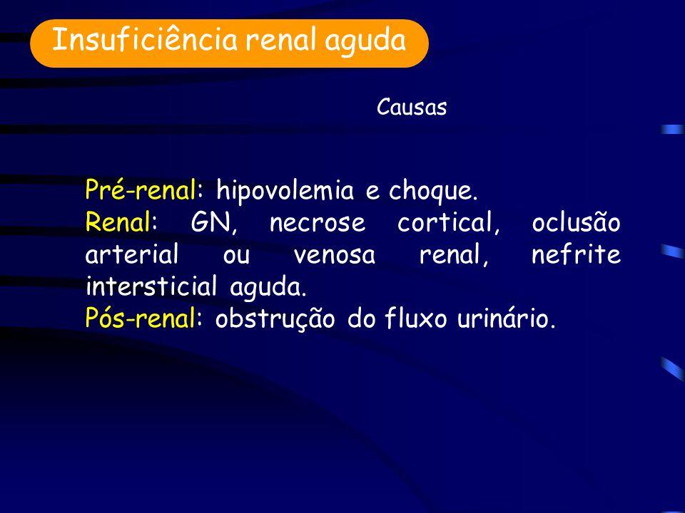 Pré-renal: hipovolemia e choque.