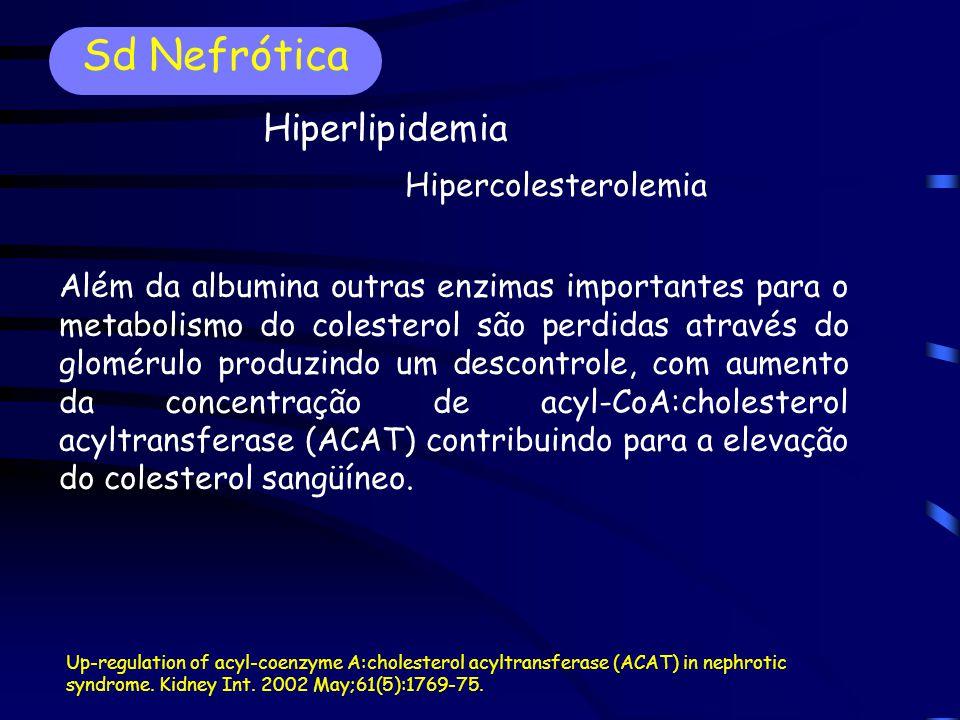 Hipercolesterolemia Além da albumina outras enzimas importantes para o metabolismo do colesterol são perdidas através do glomérulo produzindo um descontrole, com aumento da concentração de acyl-CoA:cholesterol acyltransferase (ACAT) contribuindo para a elevação do colesterol sangüíneo.