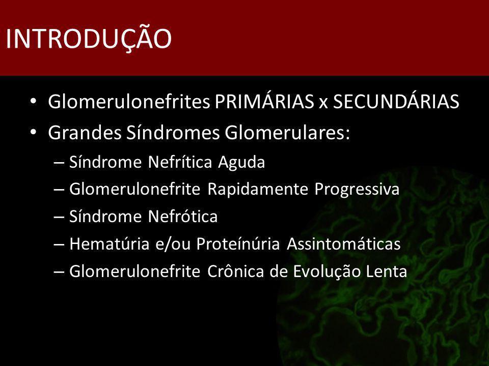 INTRODUÇÃO Glomerulonefrites PRIMÁRIAS x SECUNDÁRIAS Grandes Síndromes Glomerulares: – Síndrome Nefrítica Aguda – Glomerulonefrite Rapidamente Progres