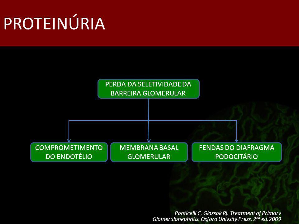 PROTEINÚRIA PERDA DA SELETIVIDADE DA BARREIRA GLOMERULAR COMPROMETIMENTO DO ENDOTÉLIO MEMBRANA BASAL GLOMERULAR FENDAS DO DIAFRAGMA PODOCITÁRIO Pontic