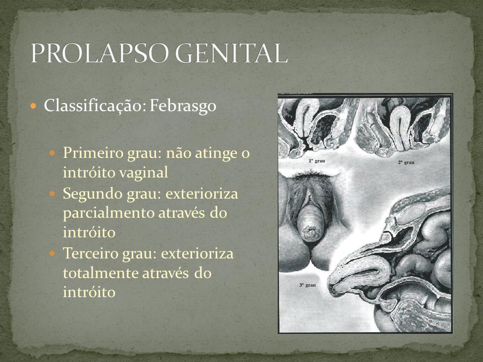 Classificação: Febrasgo Primeiro grau: não atinge o intróito vaginal Segundo grau: exterioriza parcialmento através do intróito Terceiro grau: exterio