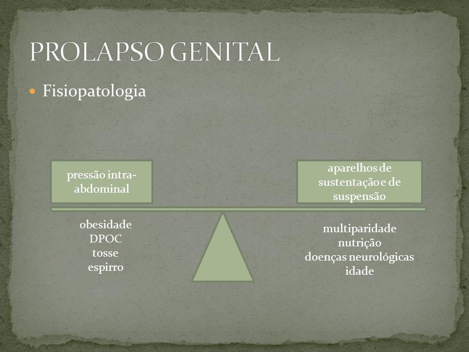 Fisiopatologia pressão intra- abdominal aparelhos de sustentação e de suspensão obesidade DPOC tosse espirro multiparidade nutrição doenças neurológic