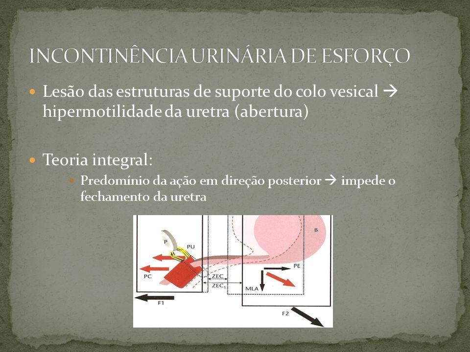 Lesão das estruturas de suporte do colo vesical hipermotilidade da uretra (abertura) Teoria integral: Predomínio da ação em direção posterior impede o