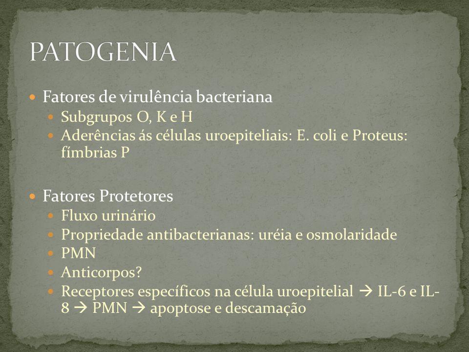 Fatores de virulência bacteriana Subgrupos O, K e H Aderências ás células uroepiteliais: E. coli e Proteus: fímbrias P Fatores Protetores Fluxo urinár