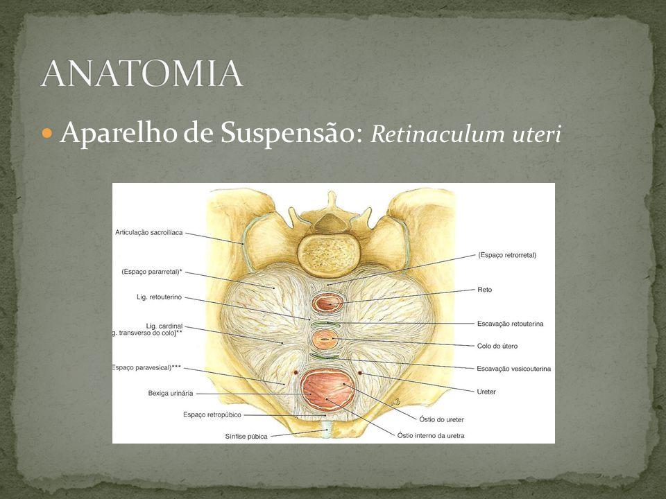 Tratamento: Boa assistência obstétirca Controle da volemia Antibioticoprofilaxia Manobra de taxe manual Manobra de taxe com relaxante uterino Rreposicionamento cirúrgico via abdominal: técnica de Huntington via vaginal: cirurgia de Kustner-Piccoli (posterior) e Spinelli (anterior)