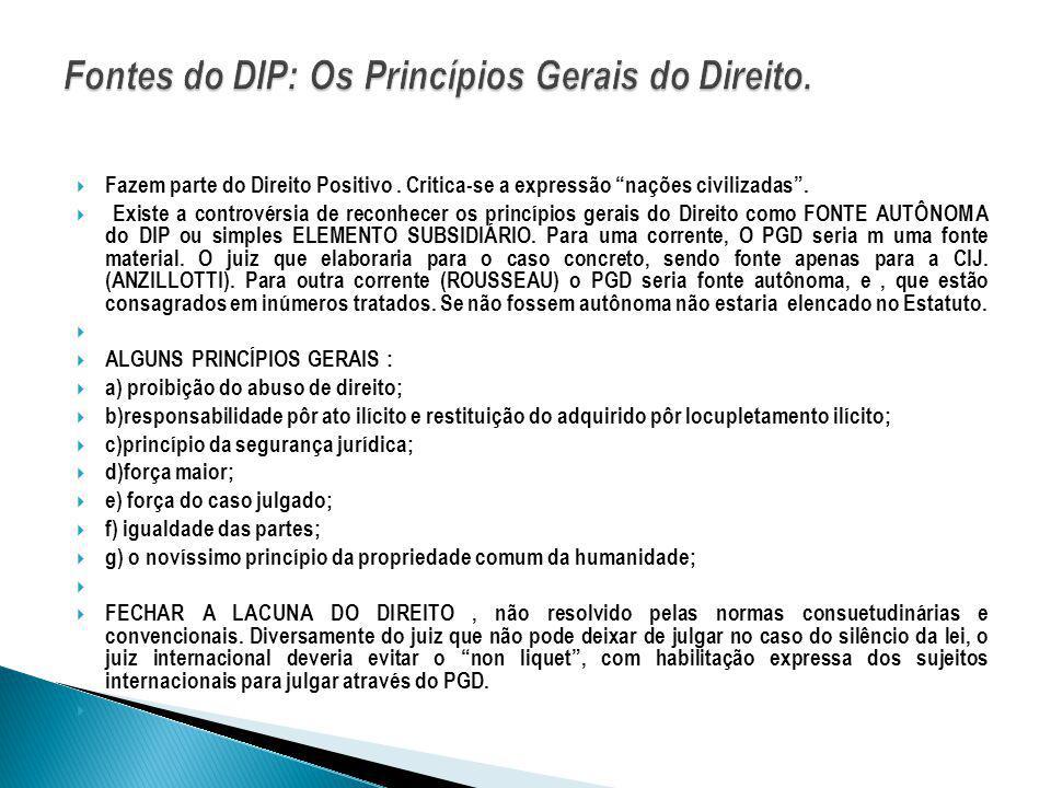 A Doutrina já teve um papel proeminente no DIP, uma vez que era formada principalmente de normas consuetudinárias.