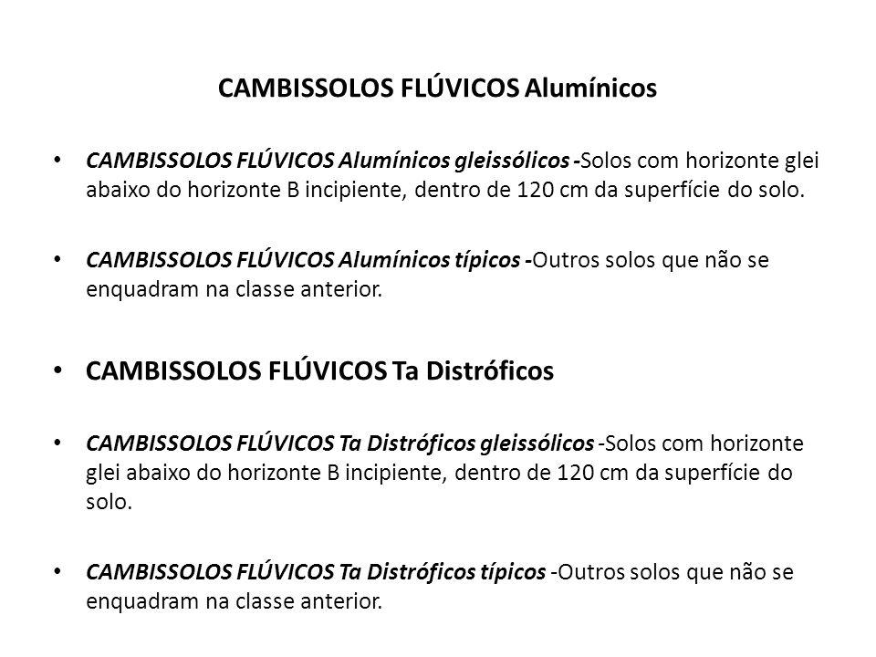 CAMBISSOLOS FLÚVICOS Alumínicos CAMBISSOLOS FLÚVICOS Alumínicos gleissólicos -Solos com horizonte glei abaixo do horizonte B incipiente, dentro de 120