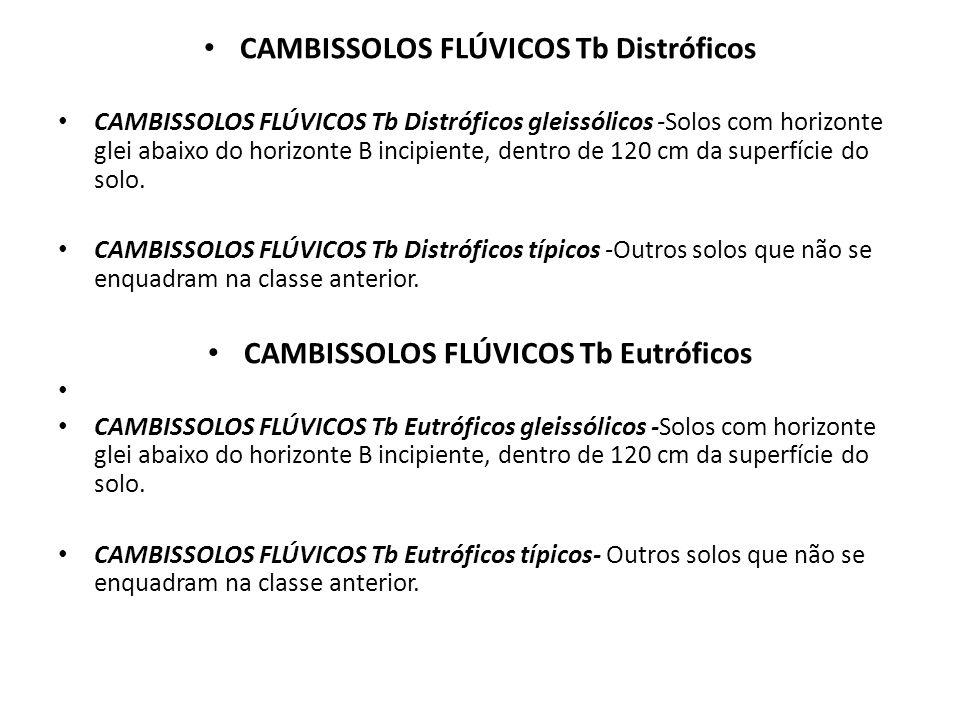 CAMBISSOLOS FLÚVICOS Tb Distróficos CAMBISSOLOS FLÚVICOS Tb Distróficos gleissólicos -Solos com horizonte glei abaixo do horizonte B incipiente, dentr