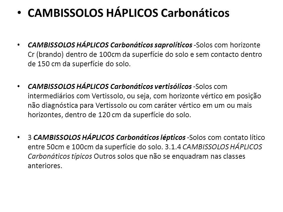 CAMBISSOLOS HÁPLICOS Carbonáticos CAMBISSOLOS HÁPLICOS Carbonáticos saprolíticos -Solos com horizonte Cr (brando) dentro de 100cm da superfície do sol