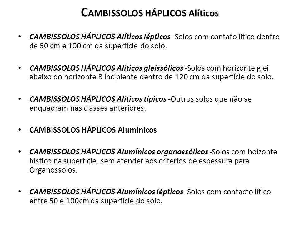 C AMBISSOLOS HÁPLICOS Alíticos CAMBISSOLOS HÁPLICOS Alíticos lépticos -Solos com contato lítico dentro de 50 cm e 100 cm da superfície do solo. CAMBIS