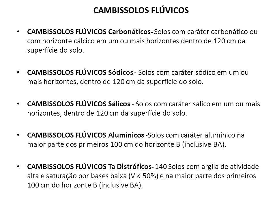 CAMBISSOLOS FLÚVICOS Ta Eutróficos -Solos com argila de atividade alta e saturação por bases alta (V >50%) na maior parte dos primeiros 100 cm do horizonte B (inclusive BA) CAMBISSOLOS FLÚVICOS Tb Distróficos -Solos com argila de atividade baixa e saturação por bases baixa (V < 50%) na maior parte dos primeiros 100 cm do horizonte B (inclusive BA).