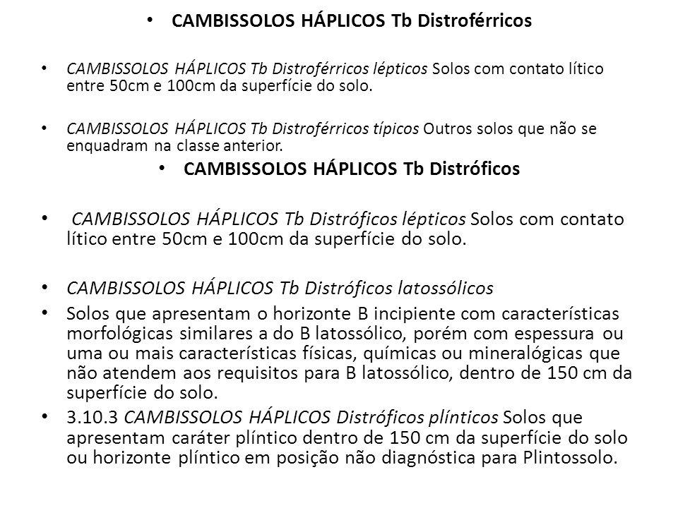 CAMBISSOLOS HÁPLICOS Tb Distroférricos CAMBISSOLOS HÁPLICOS Tb Distroférricos lépticos Solos com contato lítico entre 50cm e 100cm da superfície do so