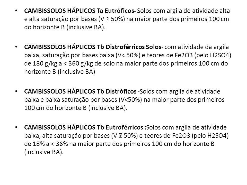 CLASSES DO 4º NÍVEL CATEGÓRICO (SUBGRUPOS) CAMBISSOLOS HÚMICOS Aluminoférricos CAMBISSOLOS HÚMICOS Tb Aluminoférricos lépticos -Solos com contato lítico entre 50cm e 100cm da superfície do solo.
