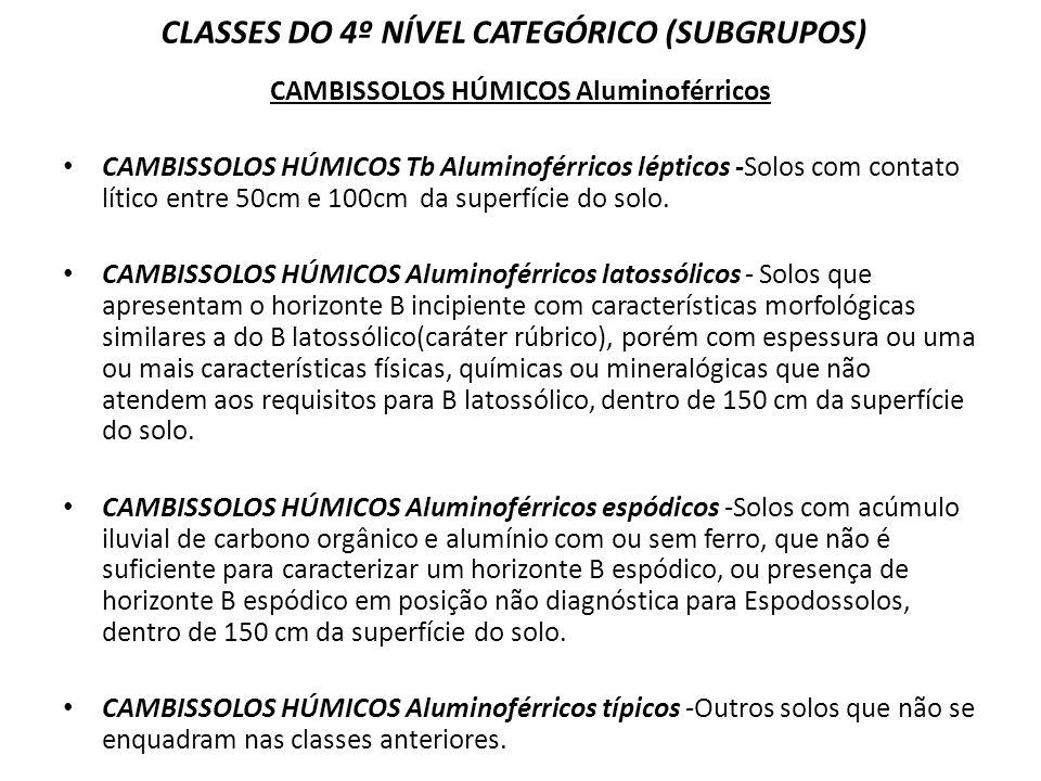 CLASSES DO 4º NÍVEL CATEGÓRICO (SUBGRUPOS) CAMBISSOLOS HÚMICOS Aluminoférricos CAMBISSOLOS HÚMICOS Tb Aluminoférricos lépticos -Solos com contato líti