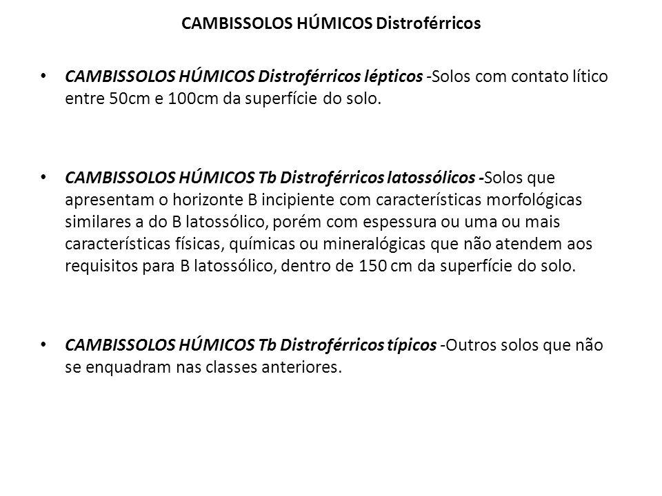 CAMBISSOLOS HÚMICOS Distroférricos CAMBISSOLOS HÚMICOS Distroférricos lépticos -Solos com contato lítico entre 50cm e 100cm da superfície do solo. CAM
