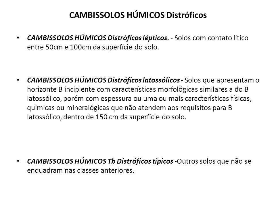 CAMBISSOLOS HÚMICOS Distróficos CAMBISSOLOS HÚMICOS Distróficos lépticos. - Solos com contato lítico entre 50cm e 100cm da superfície do solo. CAMBISS